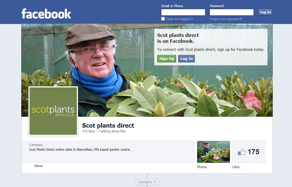 scot plants direct at hedgehogs nursery is on Facebook