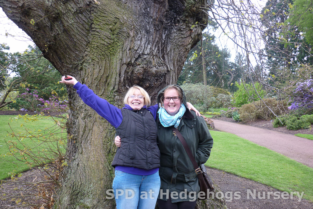 Evelyn and Amanda in front of a very old Castnea Sativa - or sweet chestnut tree