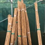 bamboo canes and garden supplies from hedgehogs nursery